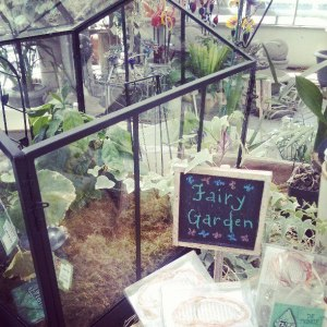 fairy garden at stanley's greenhouse